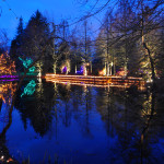 Christmas Reflections 1 at Van Deusen Gardens 2012-12-30 - Colin M Stevens