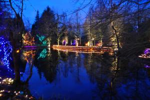Christmas Reflections 1 at Van Deusen Gardens 2012-12-30 - Colin M Stevens