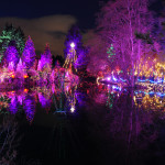 Christmas Reflections 2 at Van Deusen Gardens 2012-12-30 - Colin M Stevens