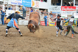 Prfessional Rodeo - Daines Ranch 2015