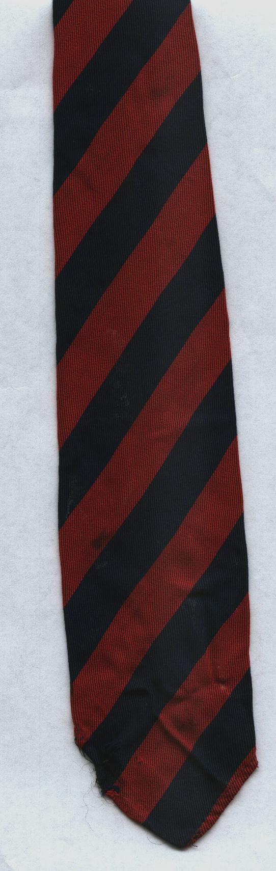 Dartmouth Academy tie