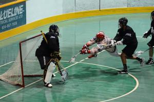 Lacrosse goal action
