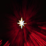 The Star - Van Deusen Gardens Xmas Lights 2012-12-27 by Colin M Stevens