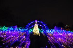 Christmas Archway Van Deusen Gardens 2012-12-30 - Colin M Stevens
