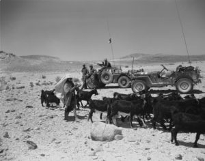 Ferret 54-82527 UNEF1231, still in green paint, alongside an M38 jeep with a young goat herder and goats in foreground. Photo ME-732