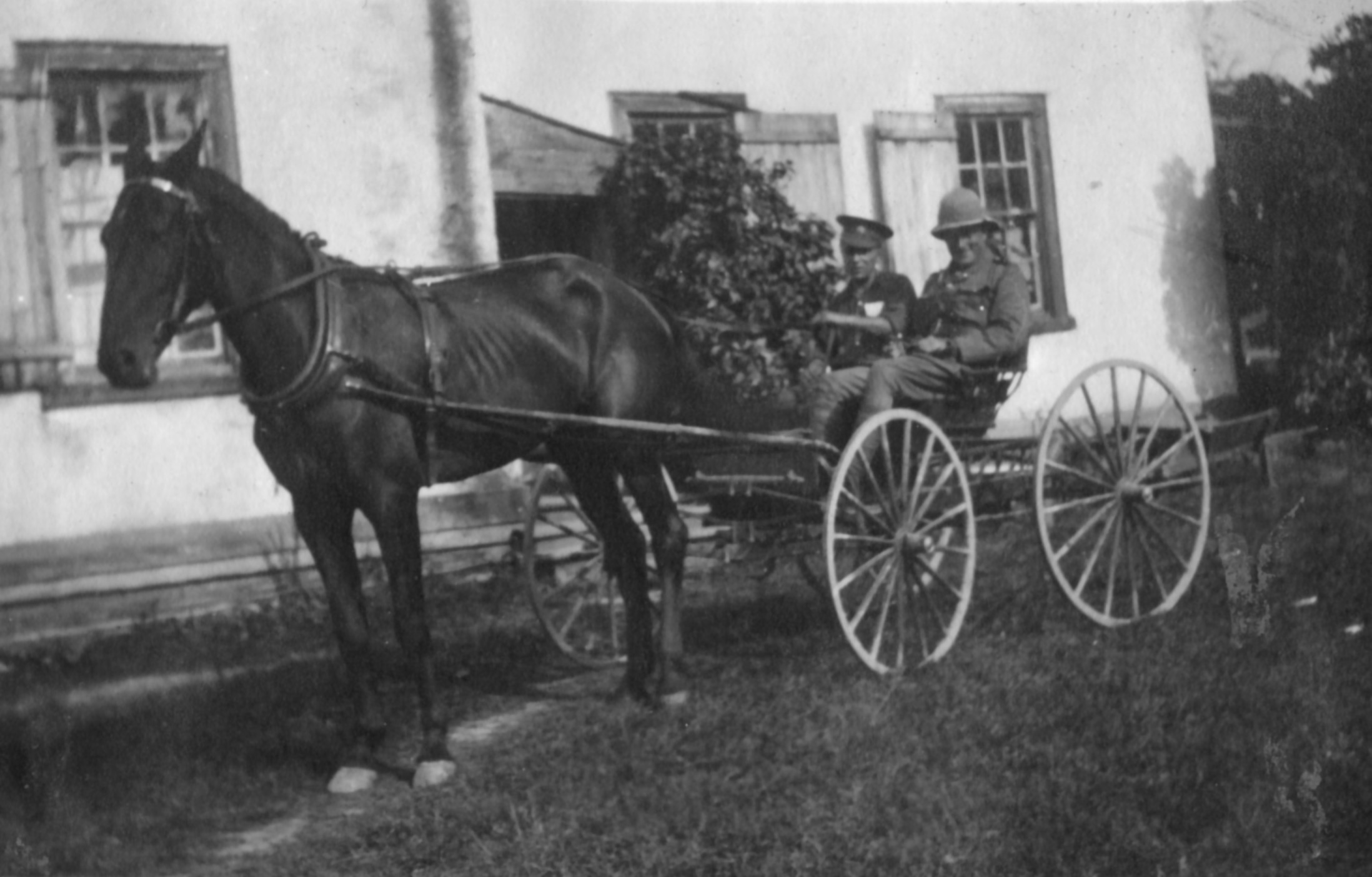 Photo of horse pulling a wagon with two soldiers in it.