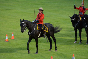 The Officer Commanding the Musical Ride on his black horse with his sword drawn. (D7100a 240)