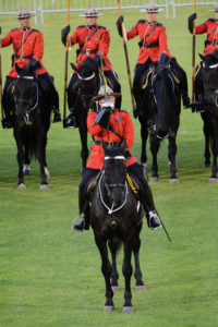 The Officer Commanding the Musical Ride gives a salute with his sword. (D7100a 246)