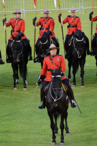 The Officer Commanding the Musical Ride gives a salute with his sword. (D7100a 247)